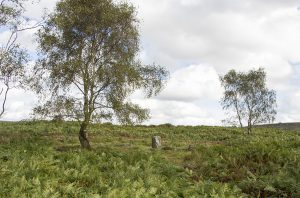 Froggat Edge Stone Circle on Stoke Flats
