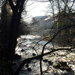 From a walk by the river Derwent