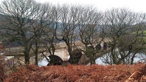 Ashopton Viaduct at Ladybower Reservoir