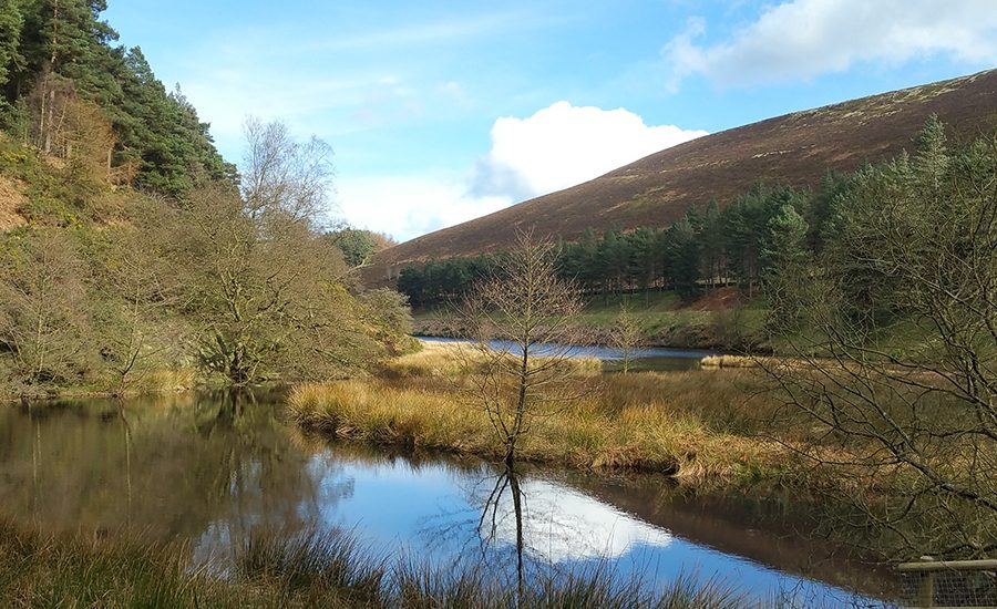 Spring Is Coming at Howden Reservoir