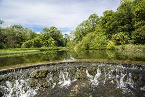 Weir In Lathkill Dale - 4321