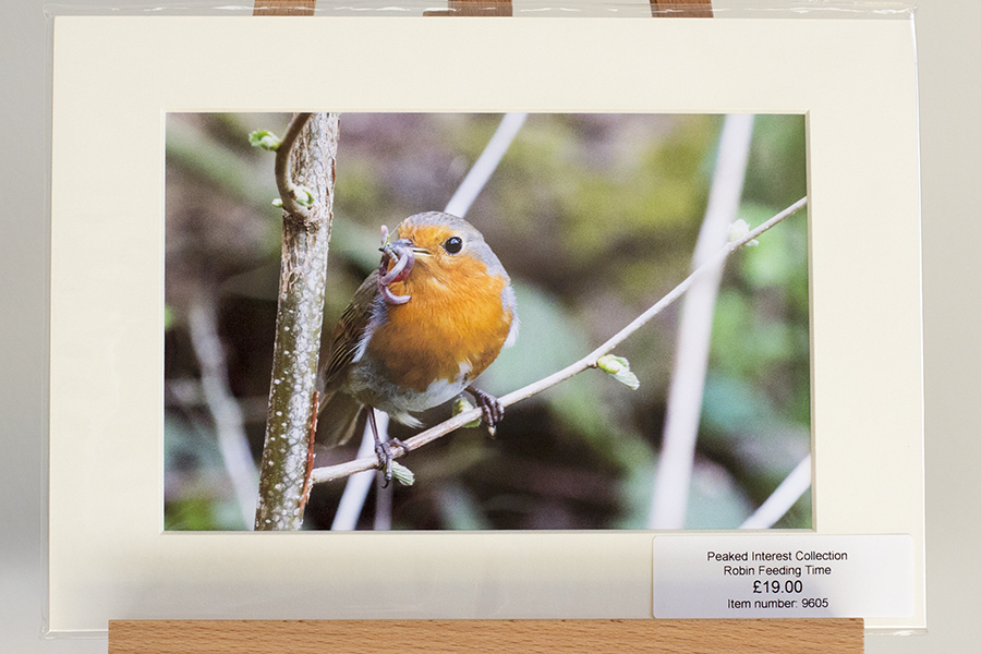 Peak District Wildlife Prints