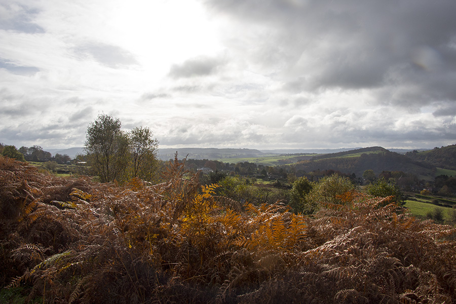 Gallery From Our Walk On Curbar Edge