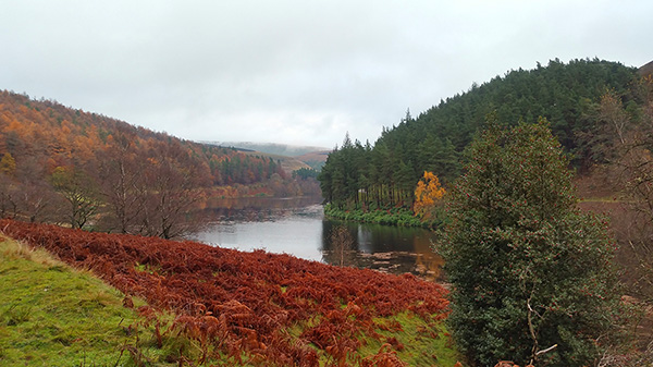 Walking Around Derwent and Howden Reservoirs