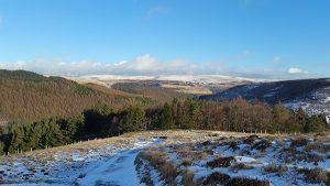 Birchinlee Pasture Overlooking the Derwent Valley and Howden Reservoir