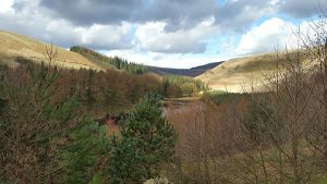 Derwent Valley, Howden Reservoir