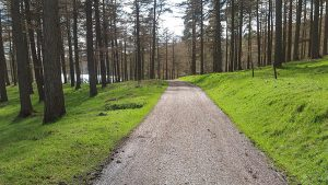 Path at Howden Reservoir