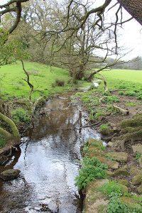 Stream near Grindleford