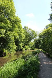 Towpath on The Cromford Canal