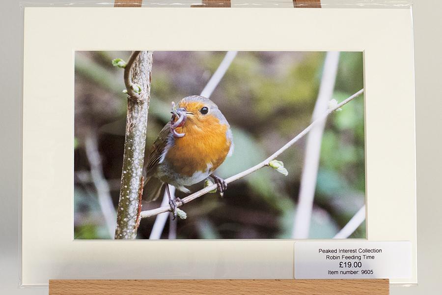 Peak District Wildlife Prints